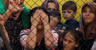 refugees-main